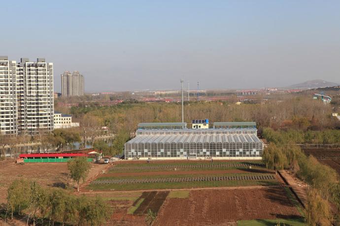 种植活动就在中心附近