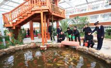 北戴河养老院-兴趣活动—喂鱼